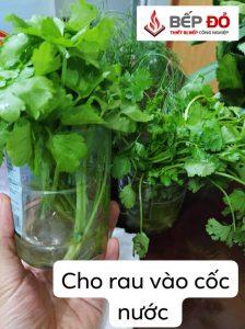 bảo quản rau xanh hiệu quả